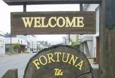 fortuna-consider-new-fees