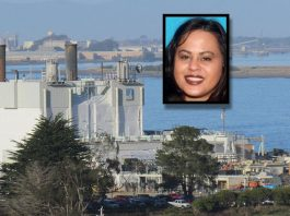 woman-arrested-crashed-into-powerplant