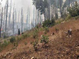 orleans-complex-fire-closes-roads
