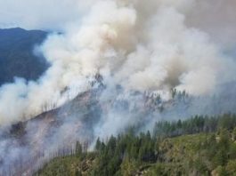 six-rivers-national-forest-fire-updates